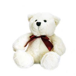 Gift - Teddy Bear - White (Only)
