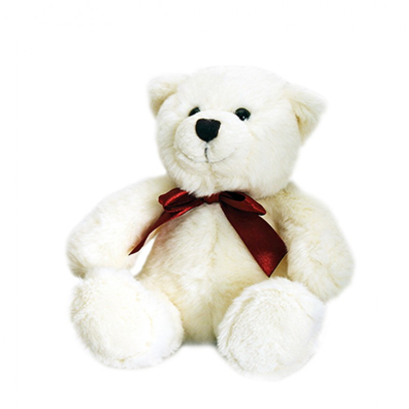Gift Teddy Bear White Only