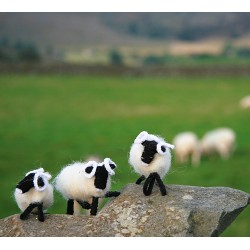 Gift - WHITE SHEEP MODEL